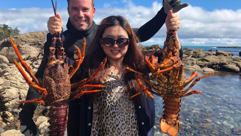 The Helicopter Line Charters Huge West Coast Crayfish For Lunch